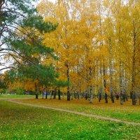 Осенний этюд в парке. :: Александр Атаулин