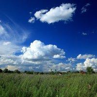 Летний пейзаж :: Михаил Пахомов