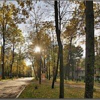 КРАСКИ ОСЕНИ  2012 ГОД. :: Юрий Ефимов