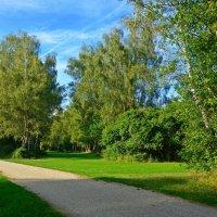 Пролетело лето, незаметно вдруг... :: Galina Dzubina