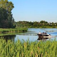 Устье реки Качалки. :: michail-pilot ***