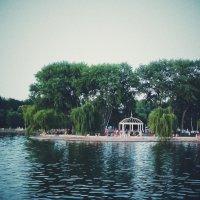 Острів :: Олександр Масний