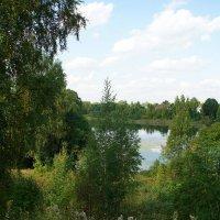 Вид на озеро Чухонское (Финское, Ижора)  с Адольфовой горы :: Елена Павлова (Смолова)