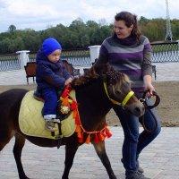 маленький человек на маленькой лошадке :: Александр Прокудин