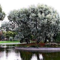 Островок в Юсуповском саду. Питер :: Александр Яковлев