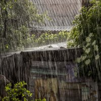 Дождь :: Mikhail Arhangel