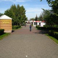 Сад металлургов :: Дмитрий Арсеньев