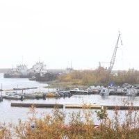 туман на пристани :: Ananasik XI