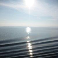 Блики на воде. :: шубнякова