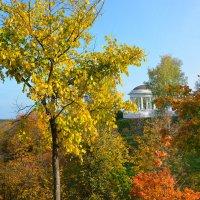 Осень в моем городе :: Борис Гуревич