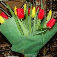 Тюльпаны. :: Татьяна ПТГ