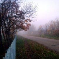 Туманное утро в деревне :: Николай Туркин