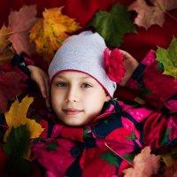 Прекрасная осень, красивые краски... :: Вячеслав Линьков