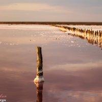 Соленое озеро)) :: vcherkun