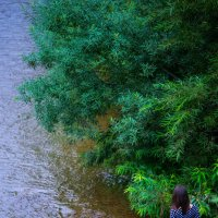Река :: Елена Новицкая