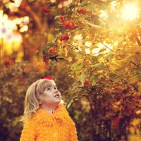 Разглядывая осень.... :: Елена Рябчевская