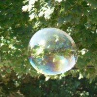 Мыльный пузырь :: Александр Рыженко