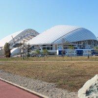 Сочи. Адлер. Олимпийский парк. Сентябрь 2015 г. :: victor maltsev