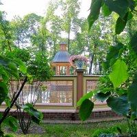 В летнем саду :: Вера Щукина