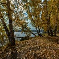Осень на озере :: vladimir