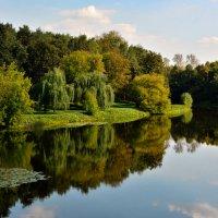 Гладь осеннего пруда... :: Anatoley Lunov