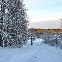 Январь :: Анна Медведева
