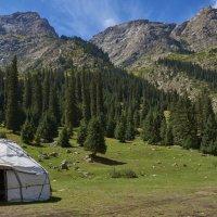 В горах Киргизии :: Сергей Рычков