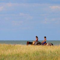 Амазонки :: Александр Неустроев