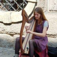 """играй музыкант..."" :: Марина Харченкова"