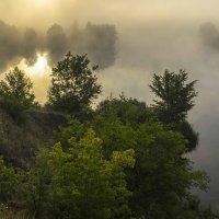 Туман на Роси. Остров Паустовского. :: Сандродед