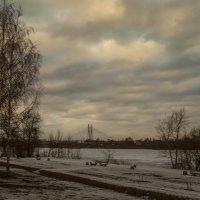Вантовый мост :: Рома Григорьев