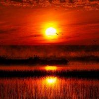 Таинственный рассвет :: Viacheslav Kruglik
