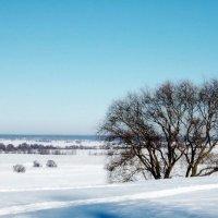 Зима в Константиново :: Nastasia Nikitina