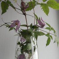 букет в прозрачной вазе :: Нина Насыпова