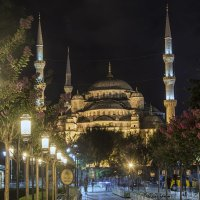Голубая мечеть или мечеть Султанахмет :: Ольга Ред