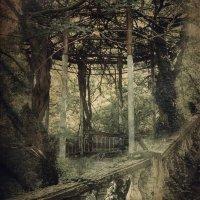 Райский сад :: Анжелика
