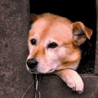 Байкал :: Фарит Cарваров