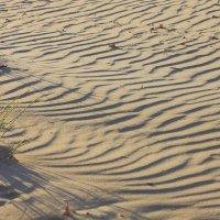 почти пустыня на пляже :: Юрий Гайворонский