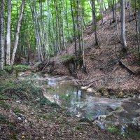 Крымский каньон :: Zinaida Belaniuk