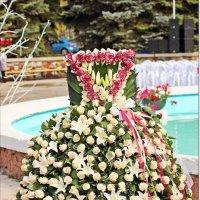 Платье из живых роз,примеряйте :: Лидия (naum.lidiya)