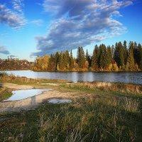 Золотая осень :: Виктор Добрянский