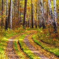 Осень.... :: игорь козельцев