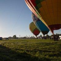 растут воздушные шары :: Эльмира Суворова