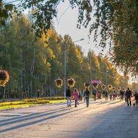 В солнечном свете :: Леонид Никитин