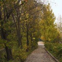 Осенний пейзаж :: Виктор Добрянский