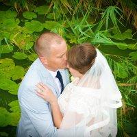 Свадьба 2015 г. :: Герман Левченко