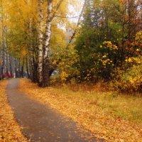 А просто осень... :: Наталья Соколова