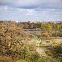 Осенний пейзаж по берегам Березины :: Владислав Писаревский