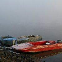 Туман :: Александр Шихин