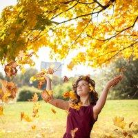 Солнечная осень :: Наталья Верхотурова